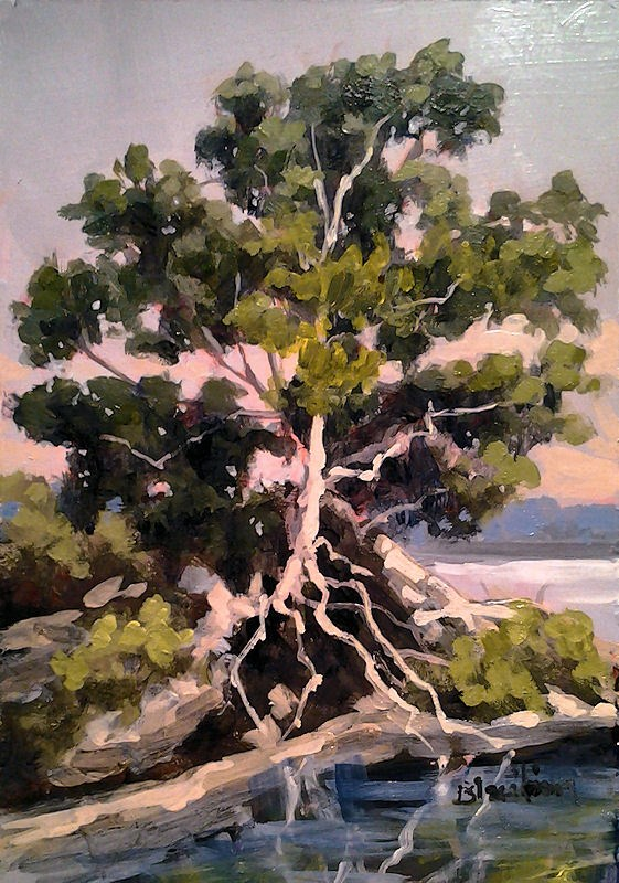 """Red Cedar Crescent Beach"" original fine art by Linda Blondheim"