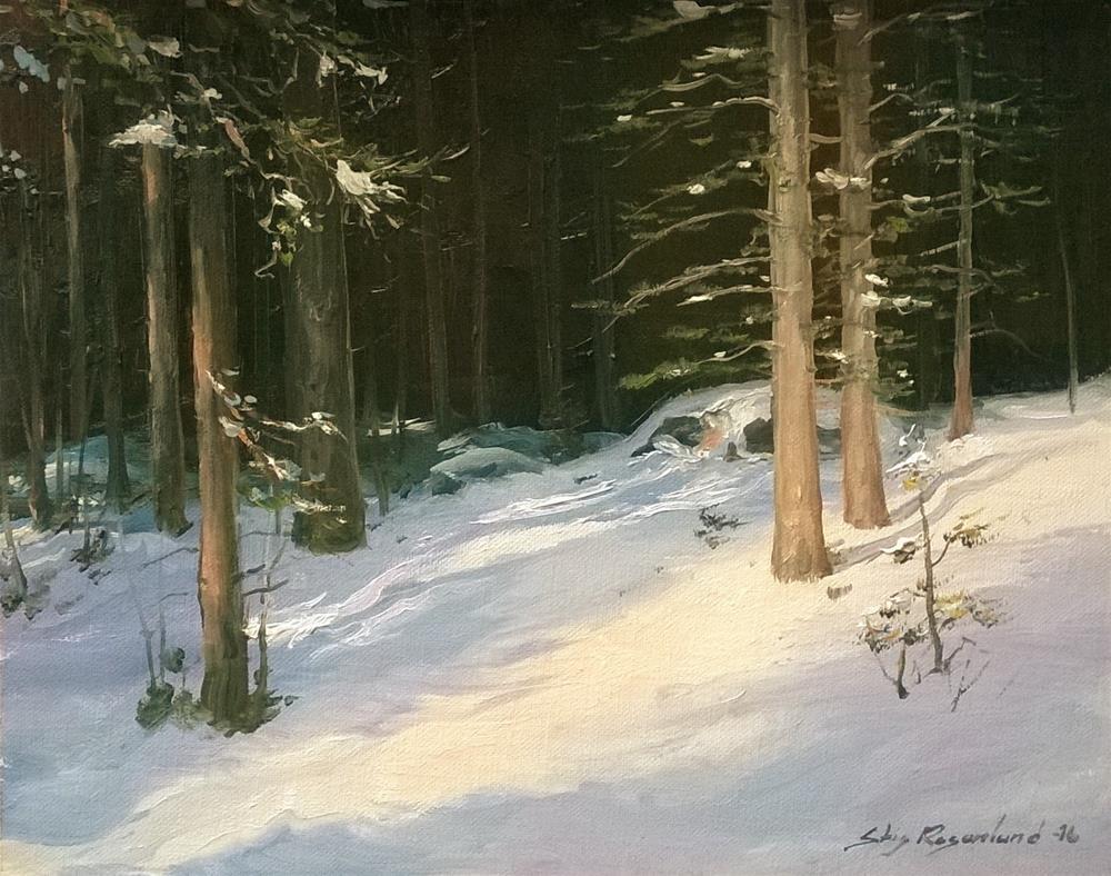 """Sunny winter scene"" original fine art by Stig Rosenlund"