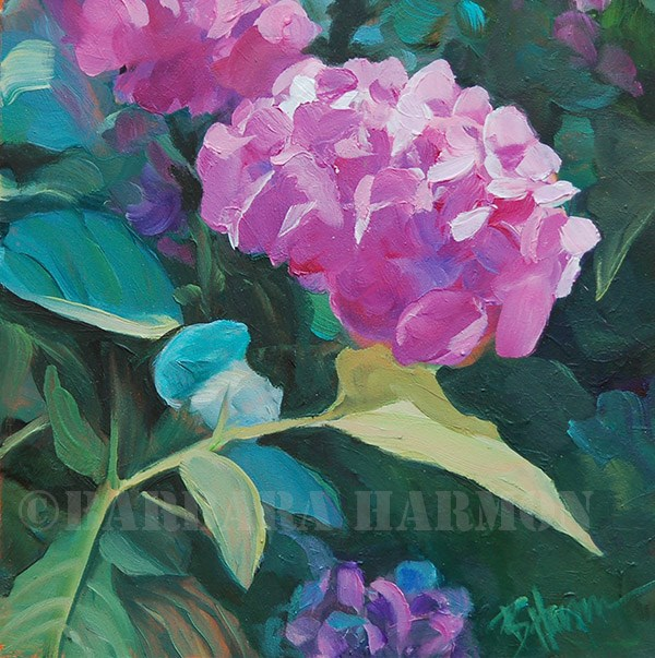 """Back Door Hydrangea"" original fine art by Barbara Harmon"