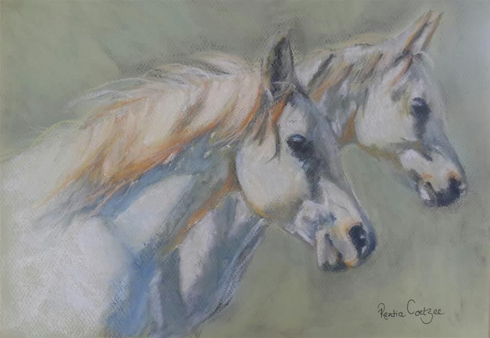 """Riding the wind"" original fine art by Rentia Coetzee"
