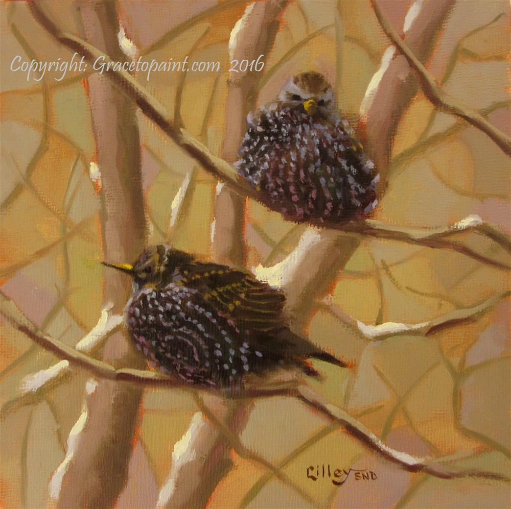 """Starlings"" original fine art by Maresa Lilley"