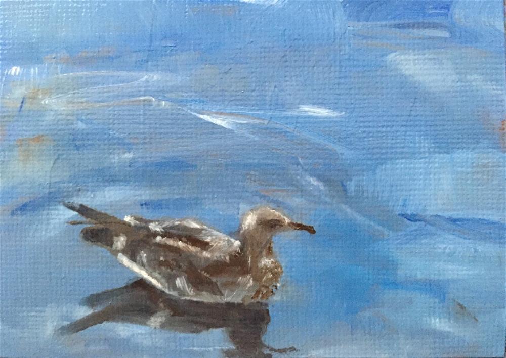 """Young Gull"" original fine art by Gary Bruton"