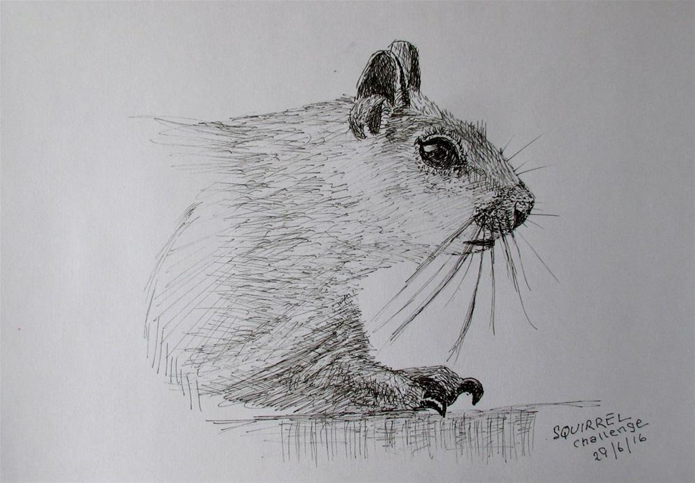 """The Squirrel Challenge"" original fine art by Steinunn Einarsdottir"