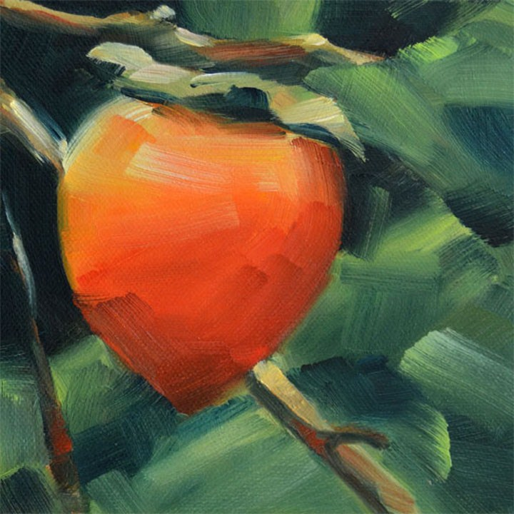 """Persimmon in a Tree"" original fine art by Cheryl Wilson"