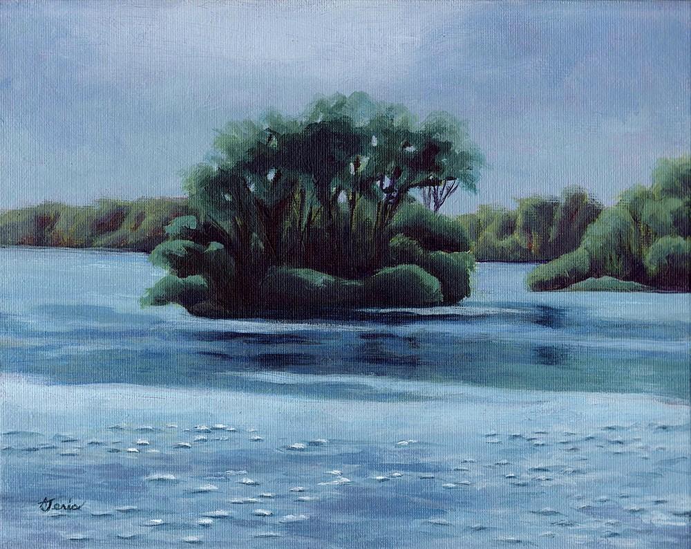 """Island in Kent Lake"" original fine art by Andrea Jeris"