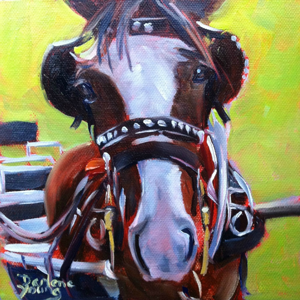 """Clydesdale Horse, oil, 6x6"" original fine art by Darlene Young"