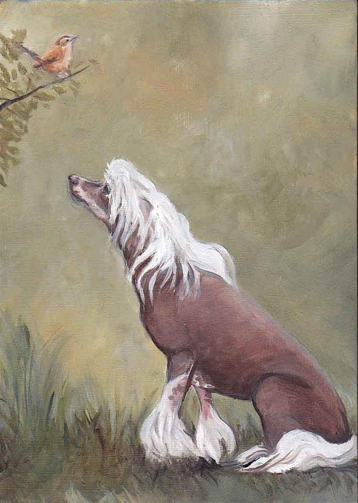 """Chinese Crested in My Garden"" original fine art by Charlotte Yealey"