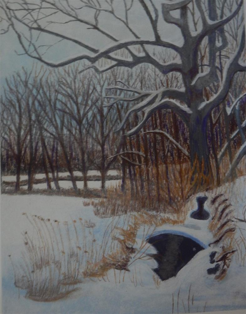 """Snow in the Branch"" original fine art by Elaine Shortall"