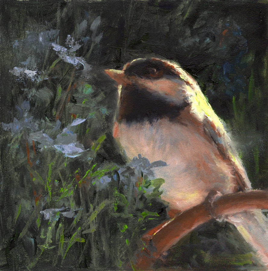 """Black Cap Basking"" original fine art by Linda Jacobus"