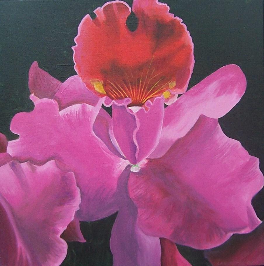 """Pink Iris"" original fine art by Lisa Wiertel"