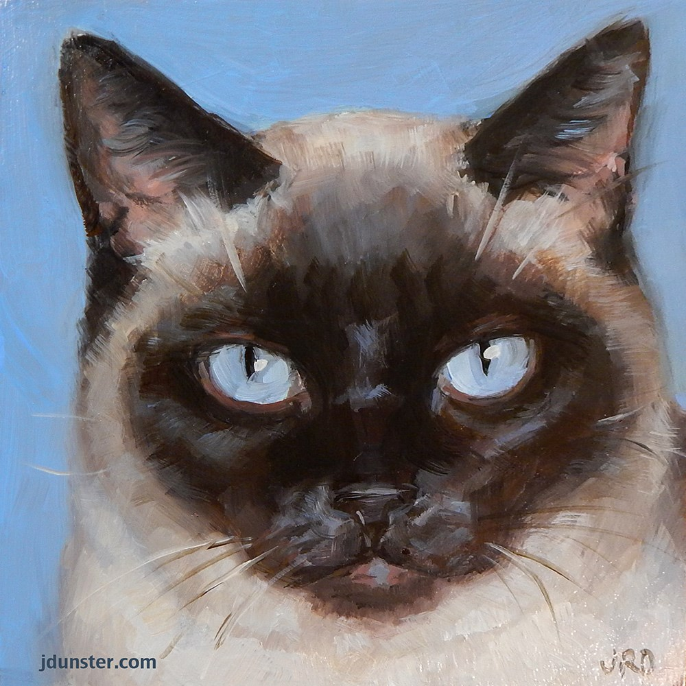 """Cat Head - Grumpy Siamese"" original fine art by J. Dunster"