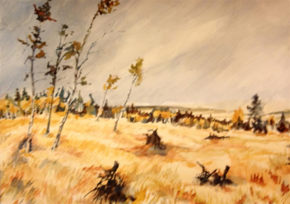 """Alvarado Campground, Westcliffe, CO"" original fine art by Jean Krueger"