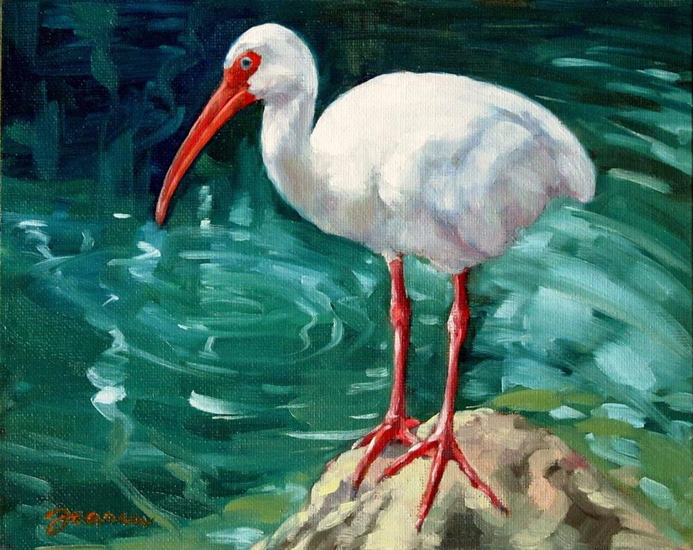 """Ibis On the Rock"" original fine art by Joanna Bingham"