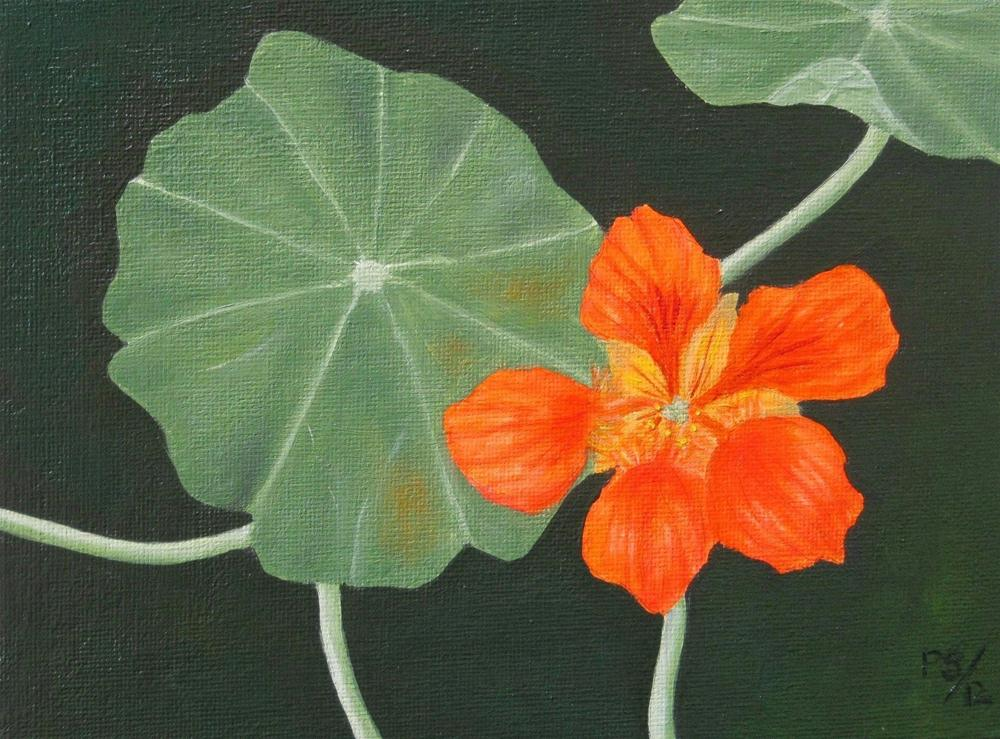 """Nasturtium"" original fine art by Pera Schillings"