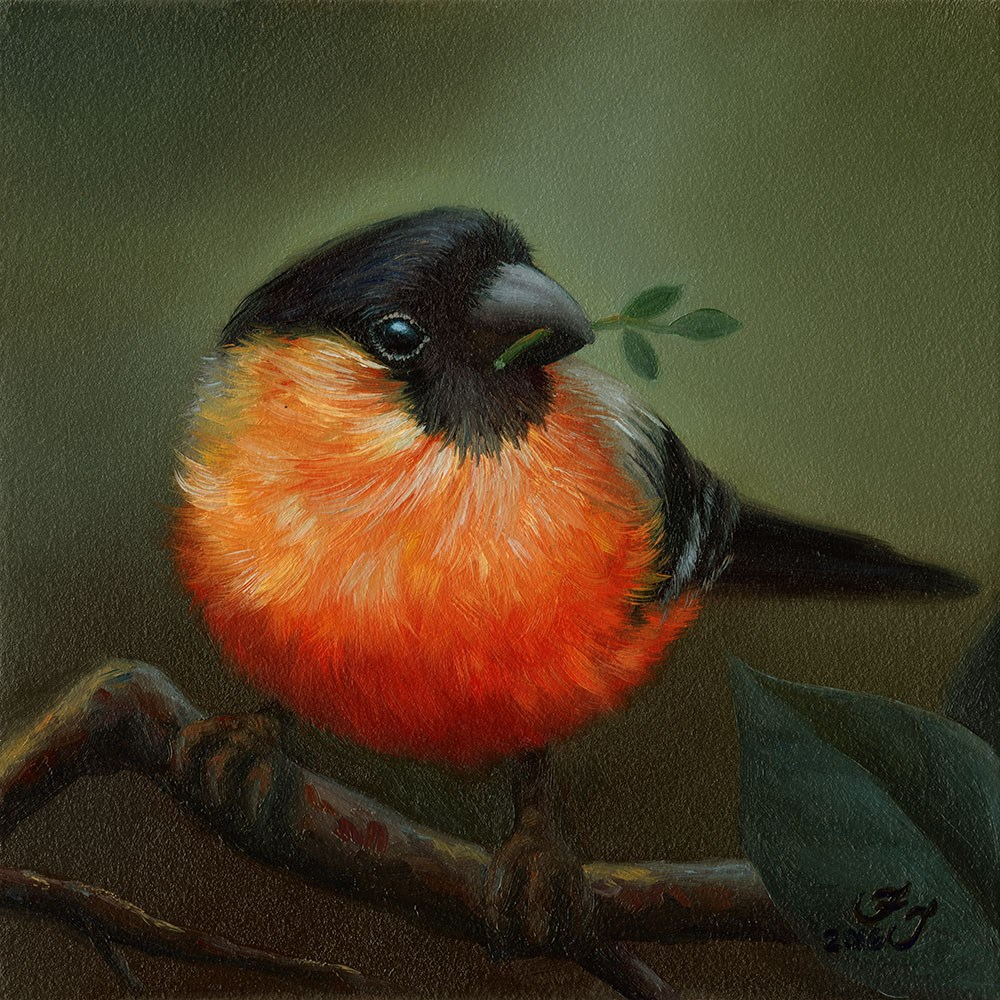 """Bullfinch"" original fine art by Faith Te"