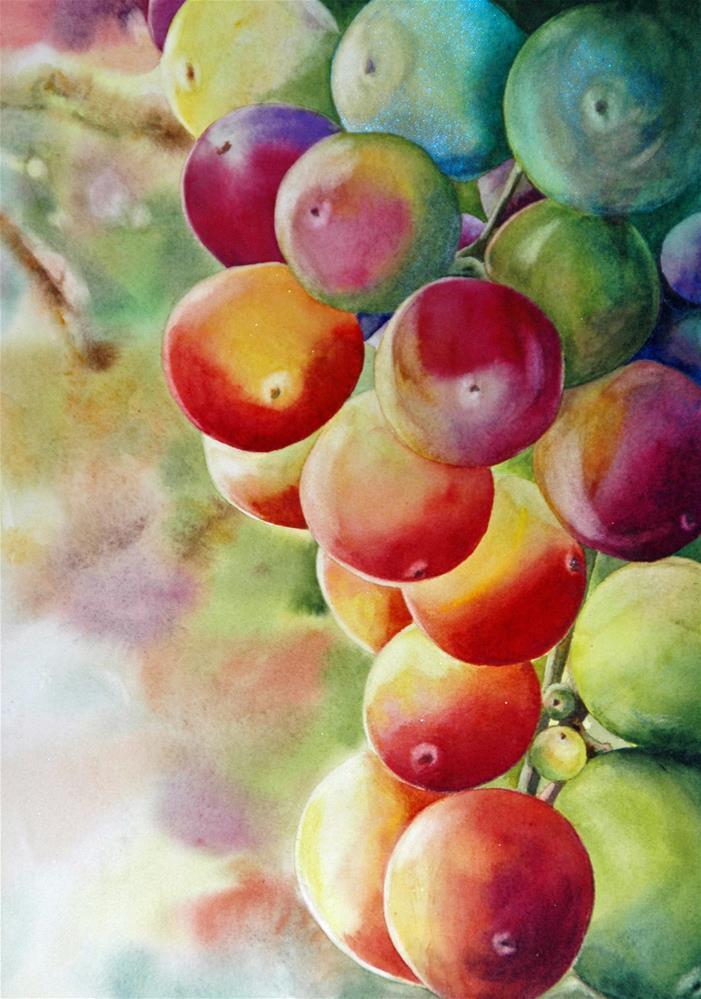 """Rainbow Grapes"" original fine art by Diane Fujimoto"