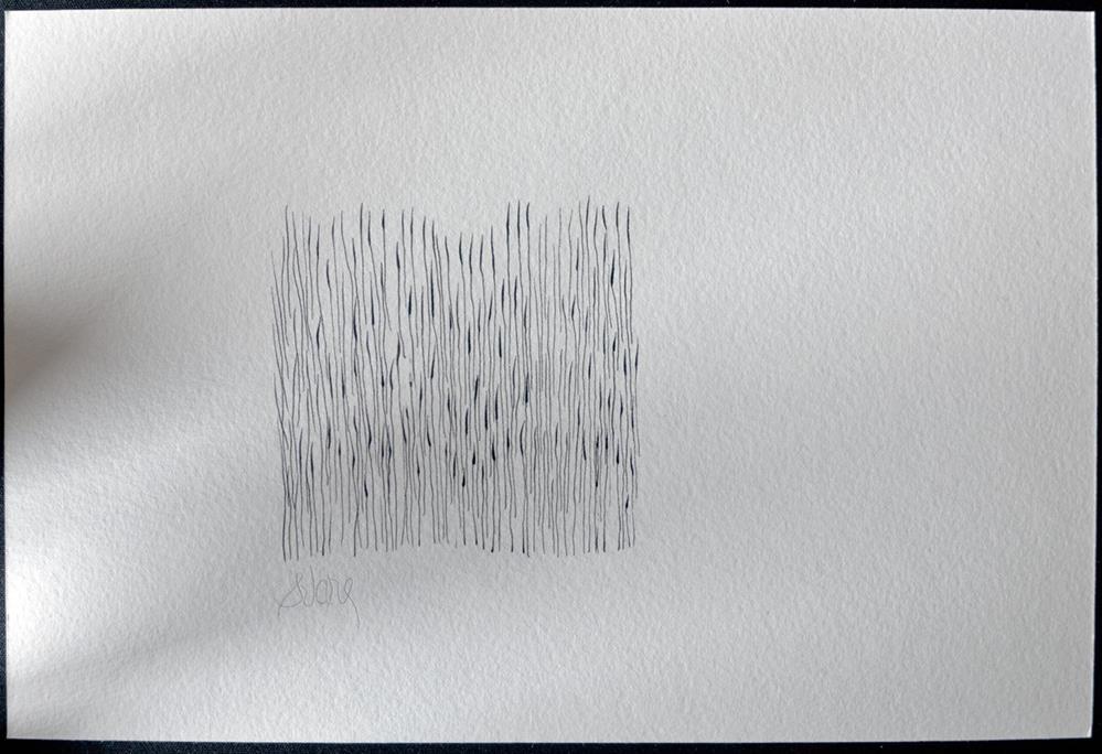 """""""DEN STORE HVIDE FLOK"""" original fine art by Craig Svare"""