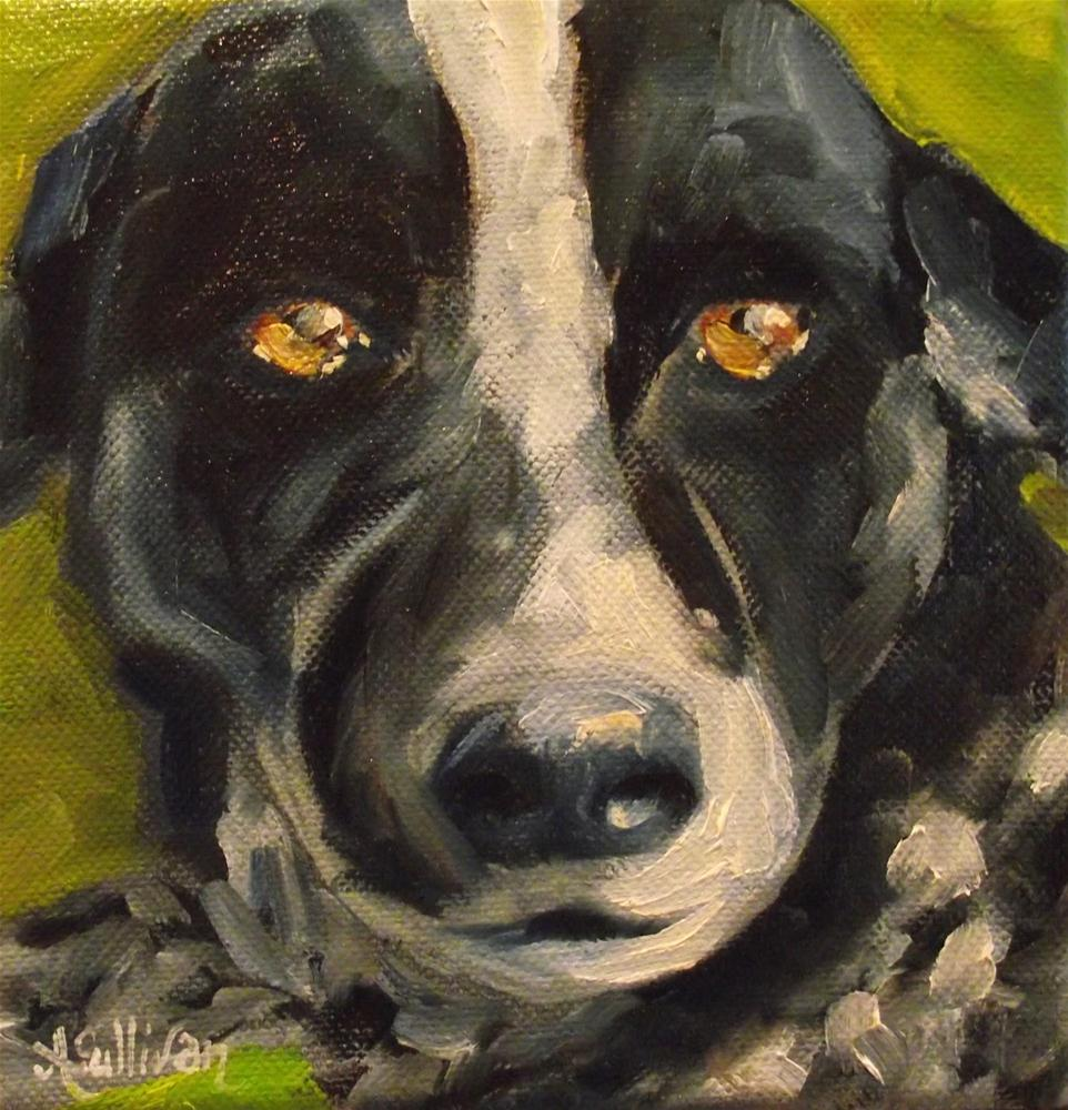 """A Crazy Dog Called Jello"" original fine art by Angela Sullivan"
