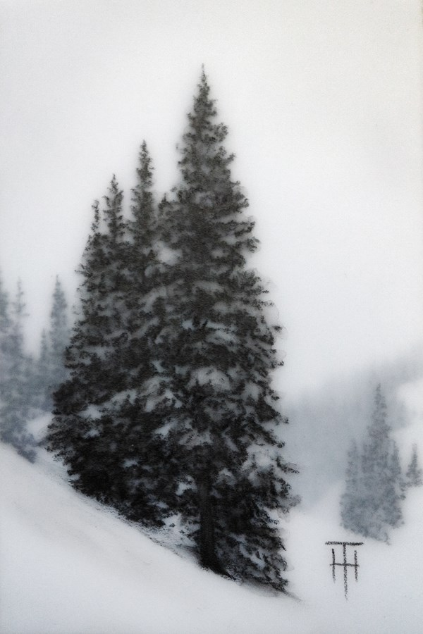 """Mountain Spruce VI"" original fine art by Terri Heinrichs"
