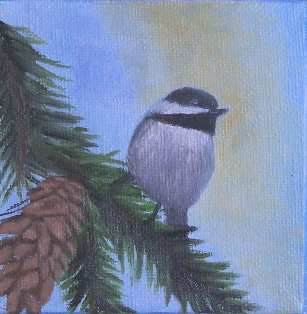 """Chicadee on a pine branch"" original fine art by John Marcum"