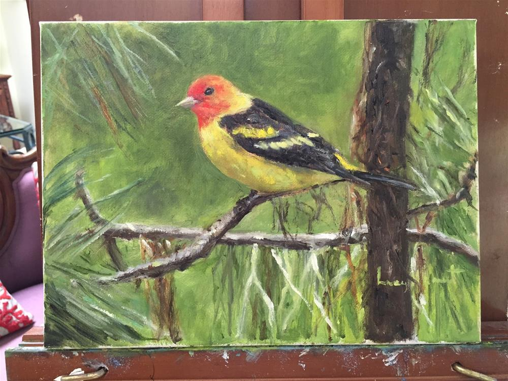 """Western Tanager"" original fine art by Lucy Hammett"