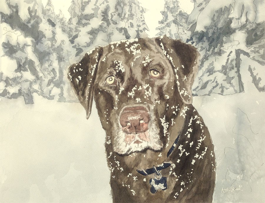 """Snow Dog"" original fine art by Andy Sewell"