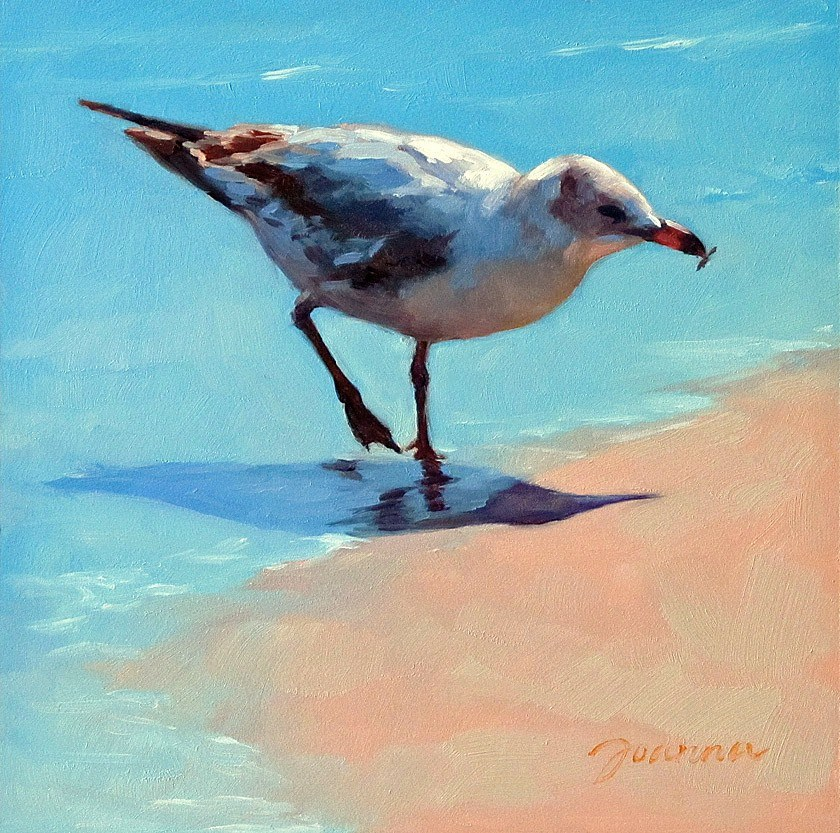 """Snacking Seagull"" original fine art by Joanna Bingham"
