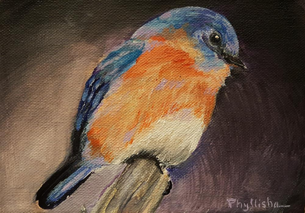 """Western Bluebird"" original fine art by Phyllisha Hamrick"