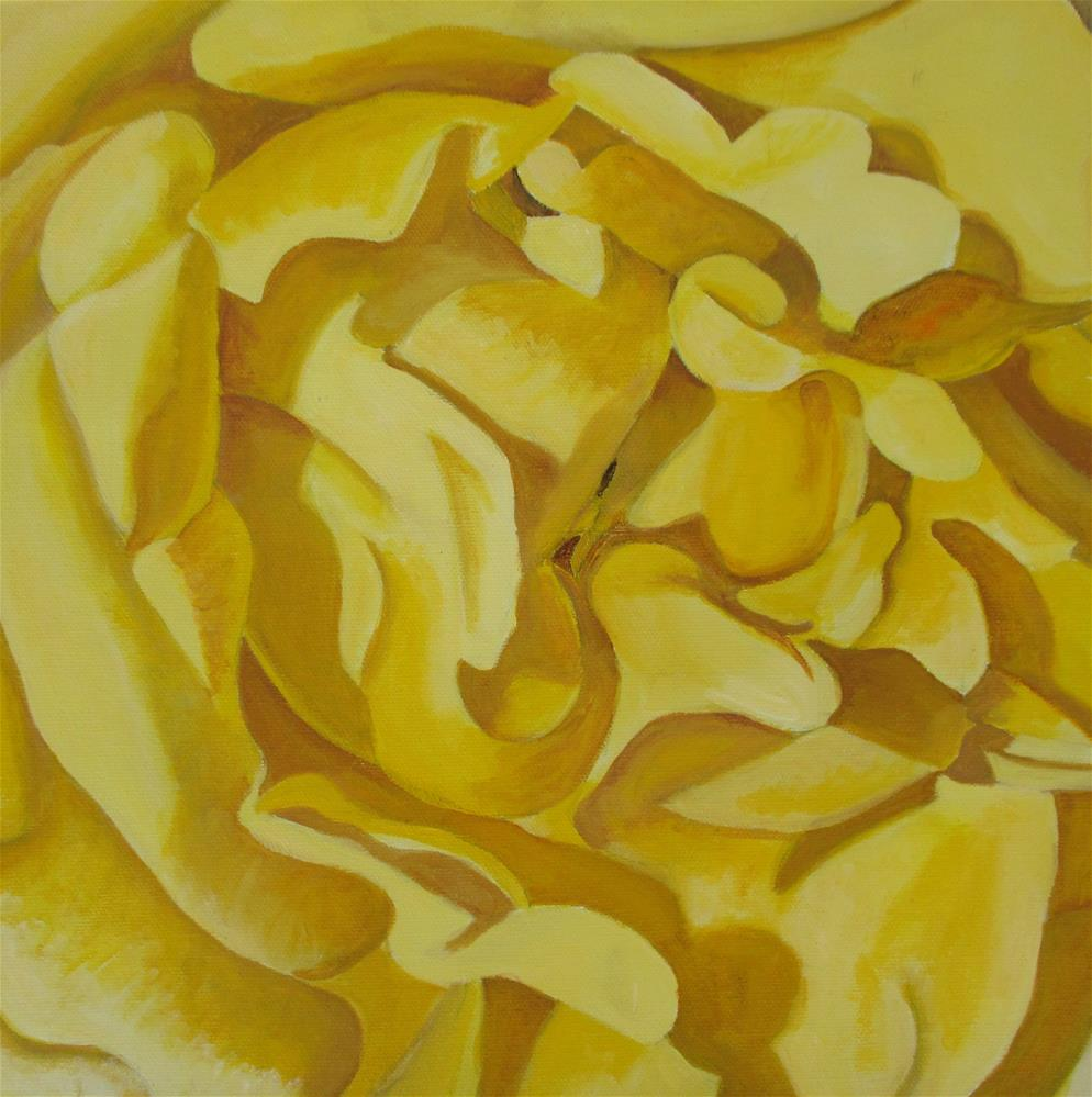 """Yellow Rose Study"" original fine art by Lisa Wiertel"