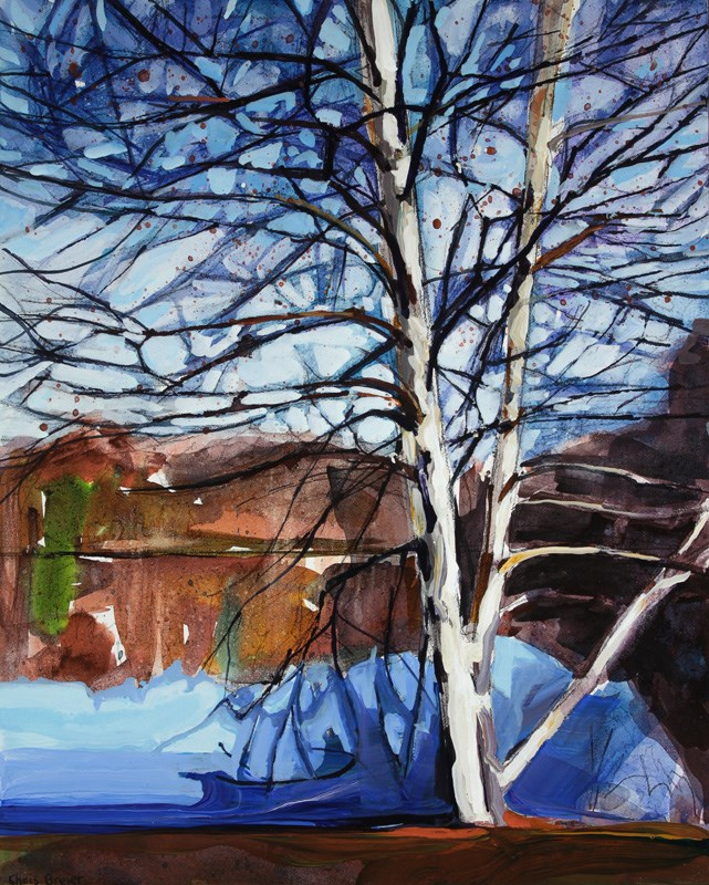 """Birch Tree"" original fine art by Chris  Breier"