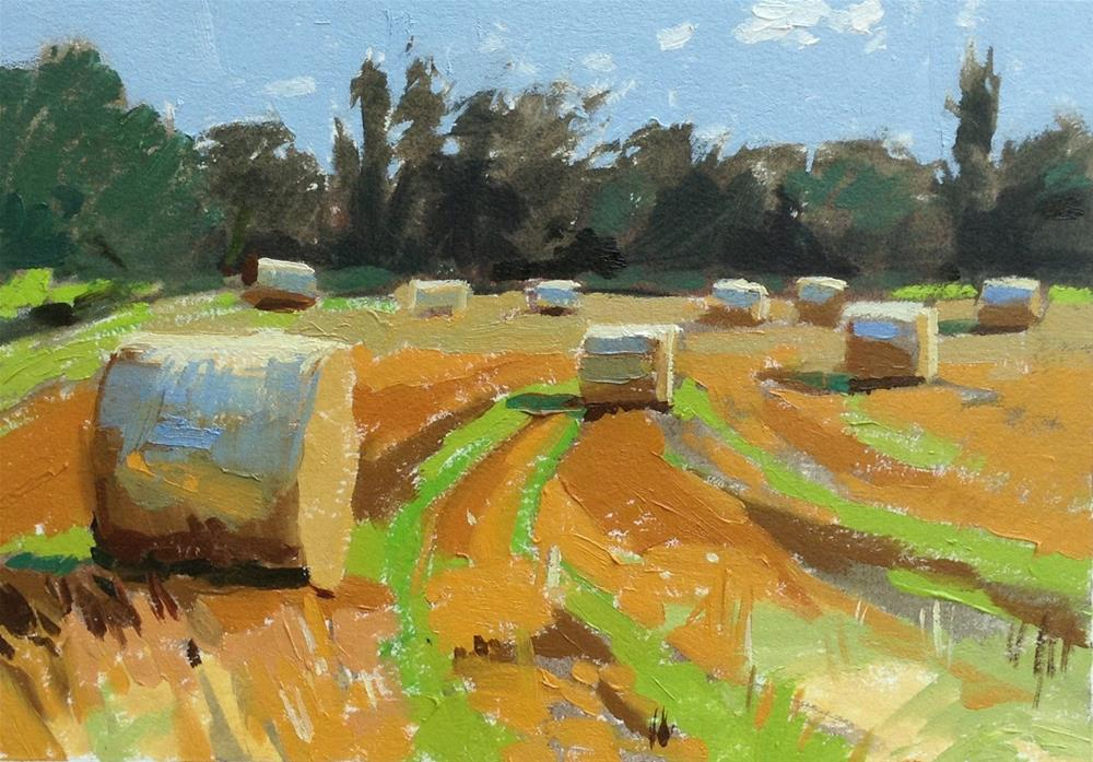 """More hay bales!"" original fine art by Haidee-Jo Summers ROI"