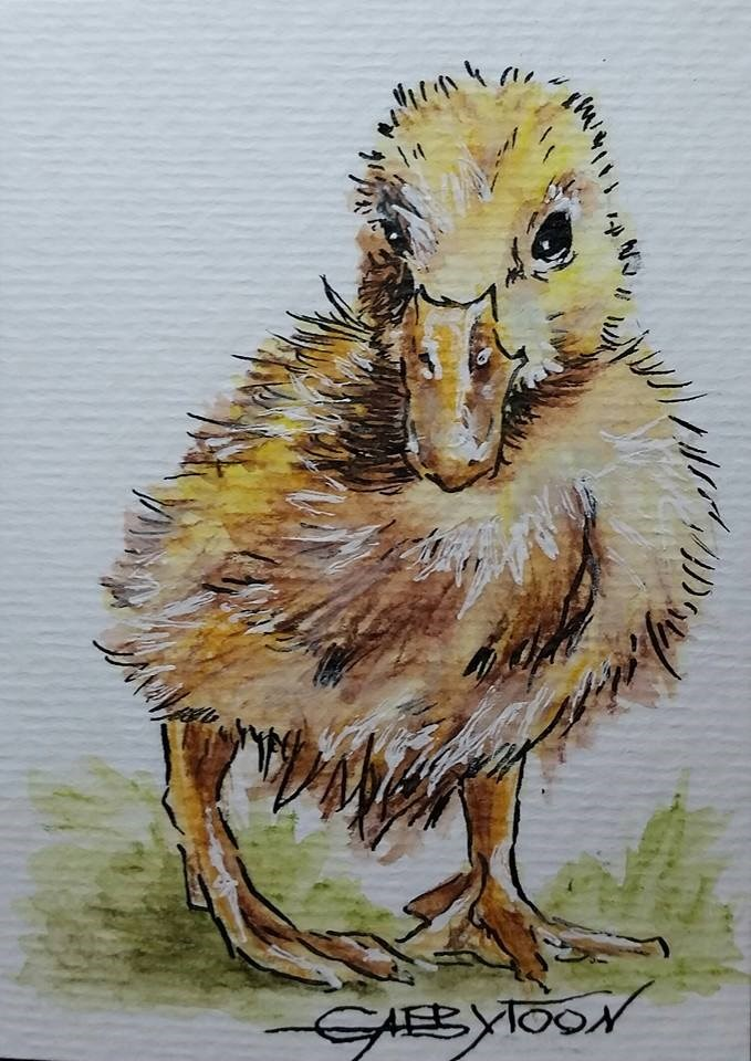 """Little Duck (ACEO)"" original fine art by Gabriella DeLamater"