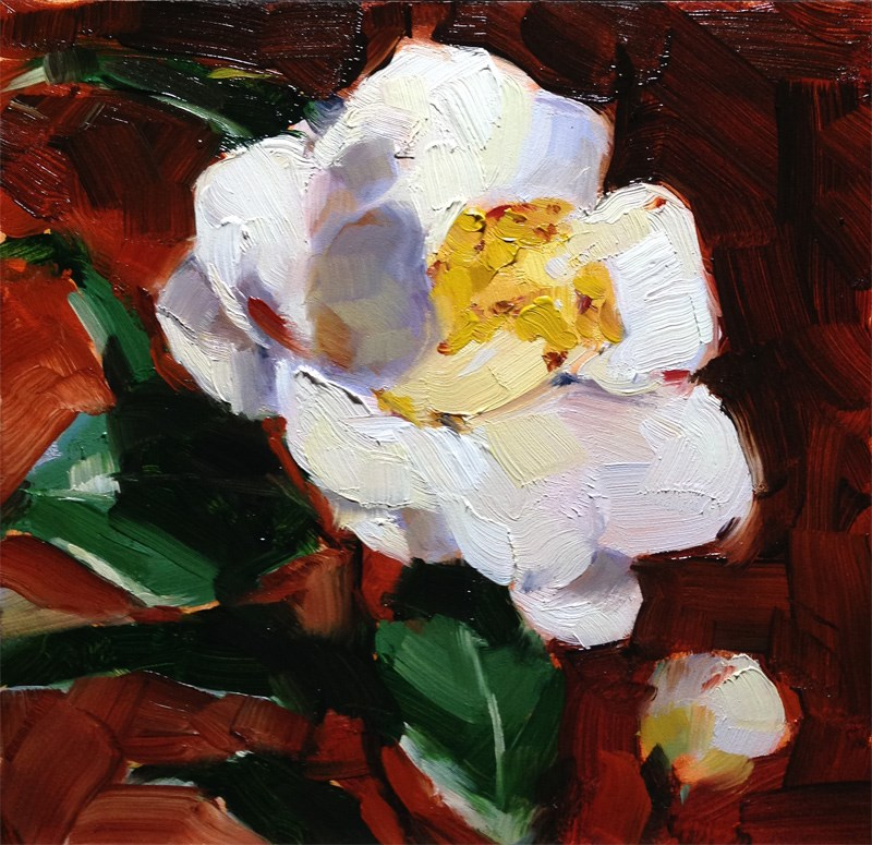 """White Blossom"" original fine art by Katia Kyte"