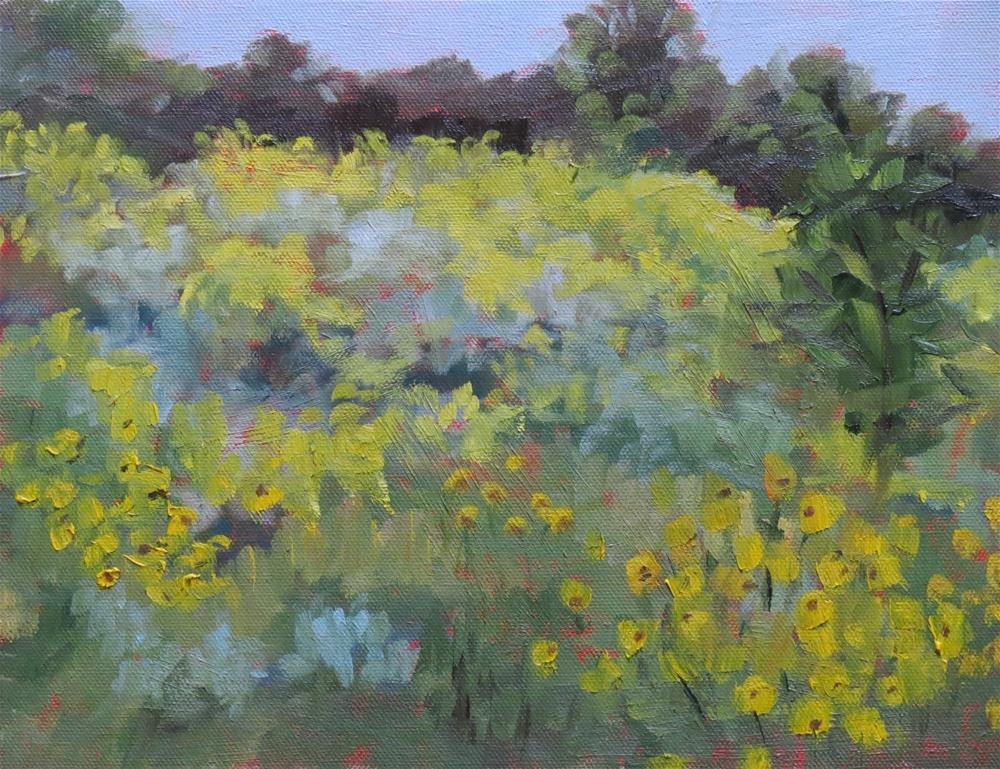 """""""Golden Hue"""" original fine art by Pam Holnback"""