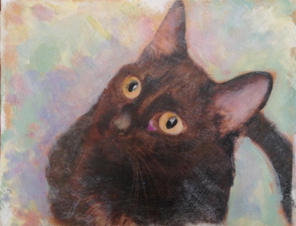 """Curious Cat"" original fine art by barbara quast"