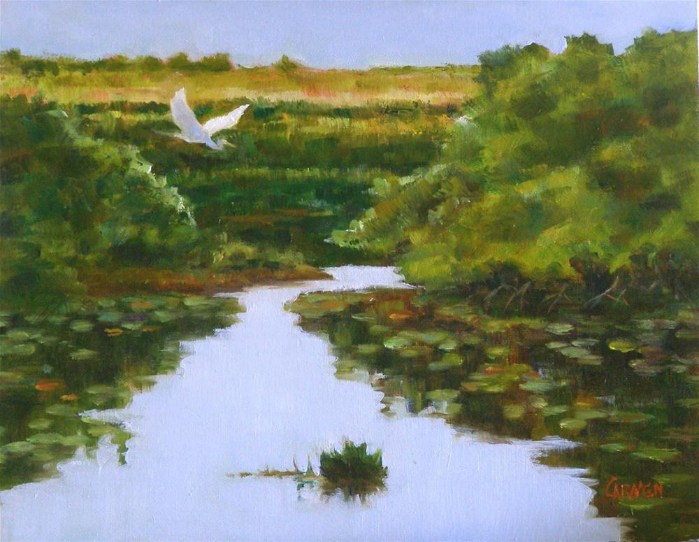"""The Everglades, 8x10 Oil on Canvas Panel"" original fine art by Carmen Beecher"