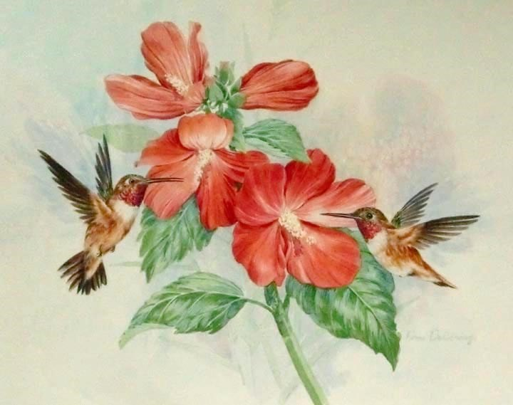 """Rufus Hummingbirds"" original fine art by Jean Pierre DeBernay"