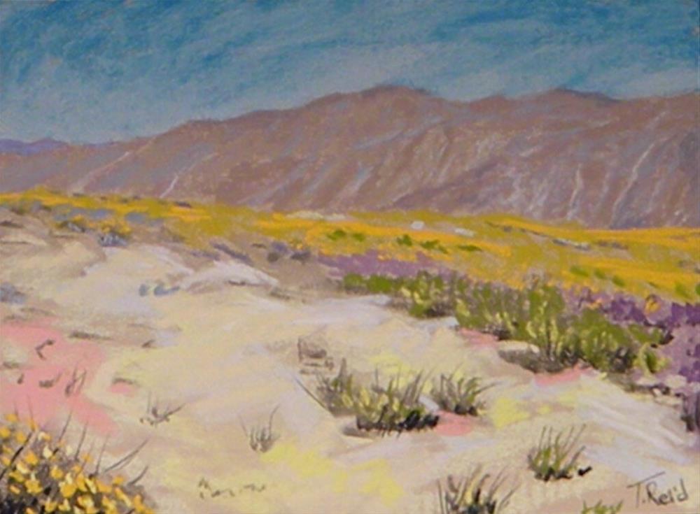 """Tucson vist"" original fine art by Toby Reid"