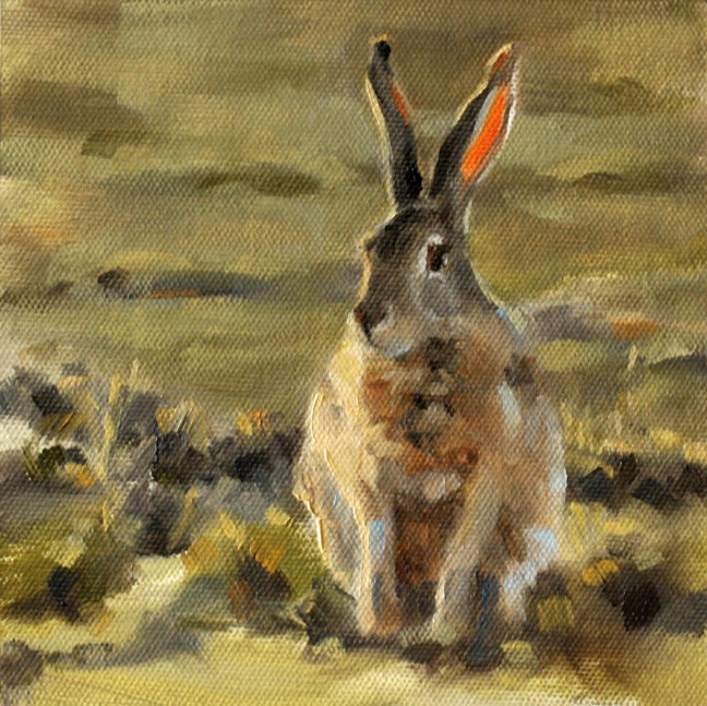 """Jackrabbit"" original fine art by Pamela Poll"