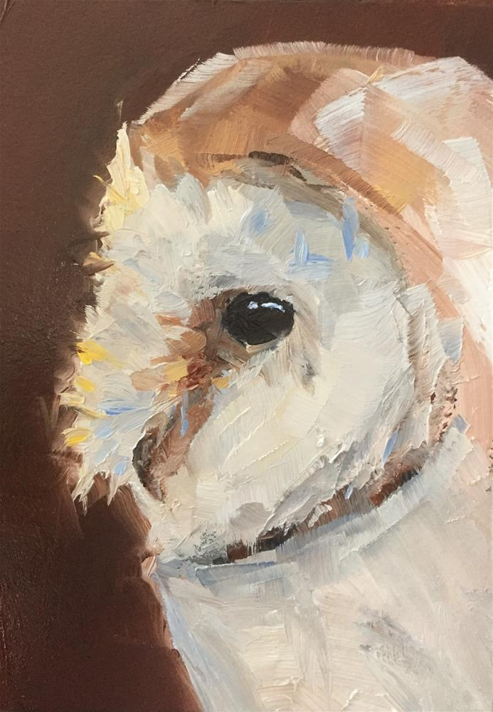 """Barn Owl Profile"" original fine art by Gary Bruton"