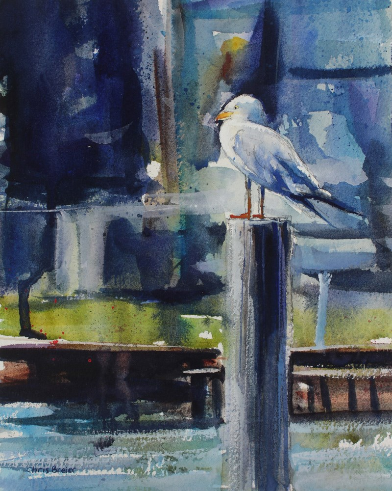 """Seagull"" original fine art by Chris  Breier"