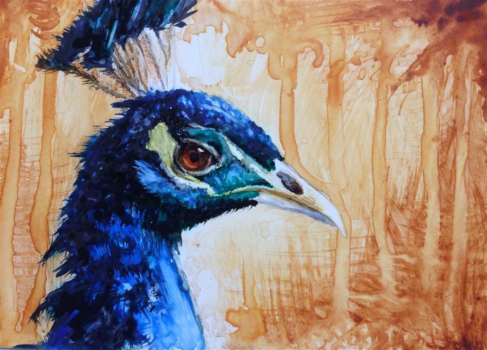 """Peacock"" original fine art by Claudia Selene"