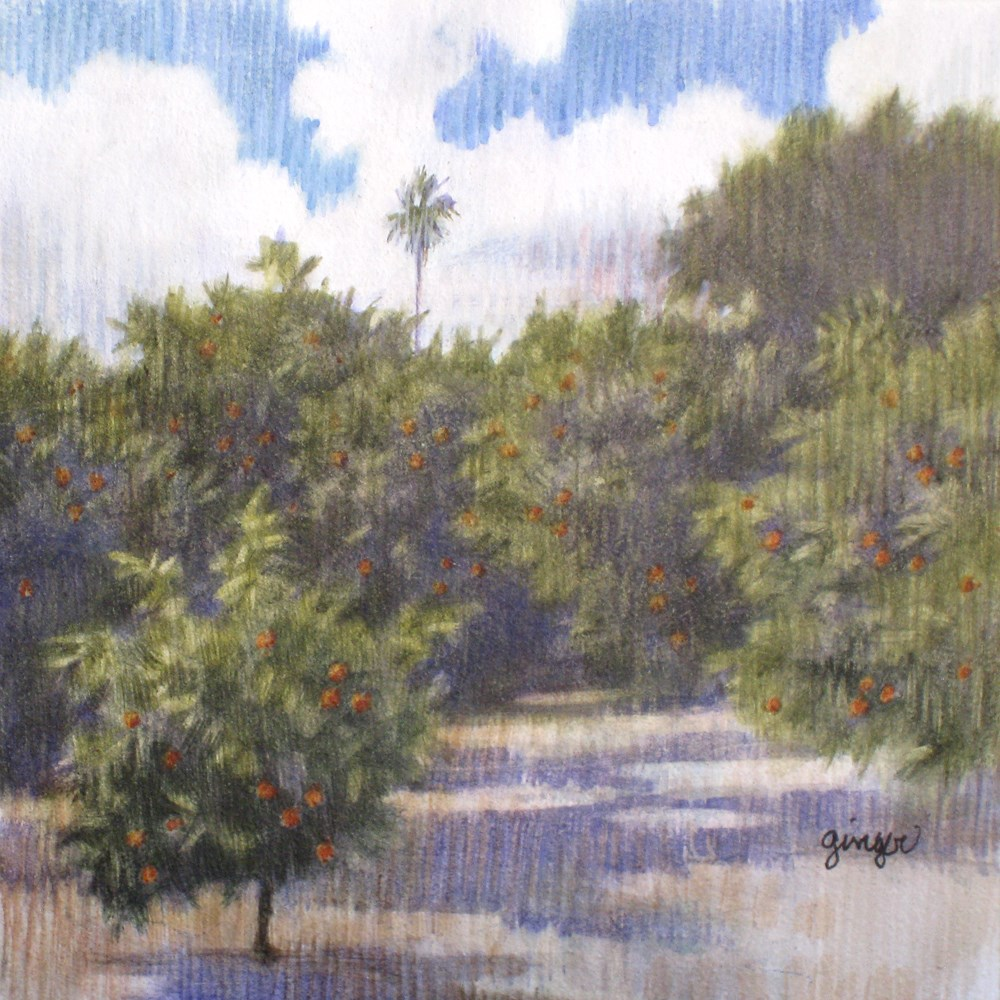 """Orange Grove with Clouds"" original fine art by Ginger Pena"