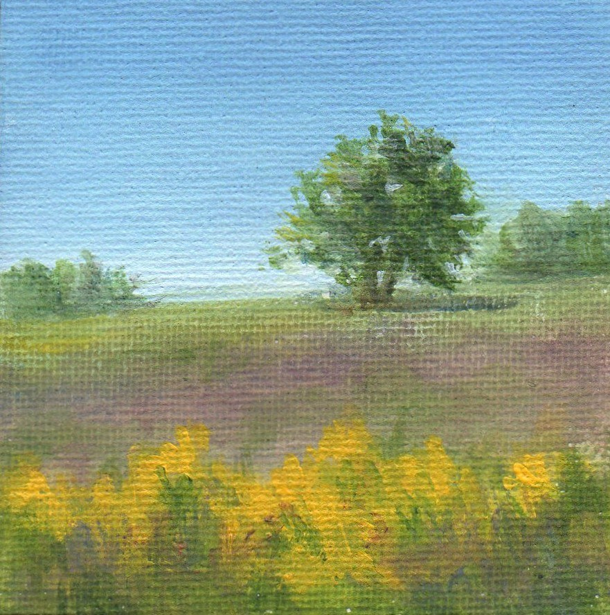 """Summer's Hill"" original fine art by Debbie Shirley"