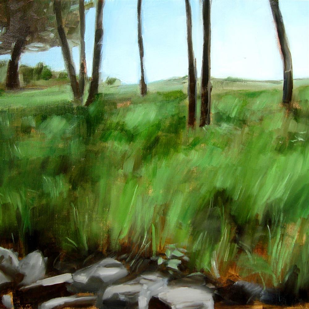 """Broadmoor Fields, Natick MA (no.65)"" original fine art by Michael William"