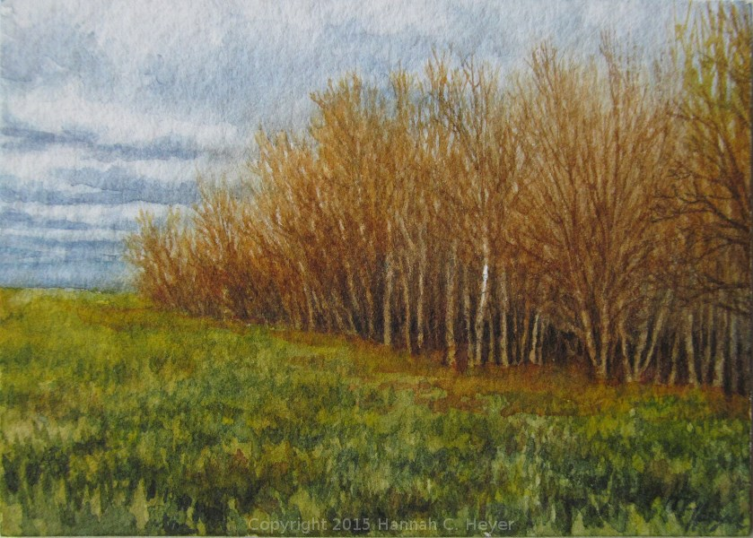 """Edge of the Wood"" original fine art by Hannah C. Heyer"
