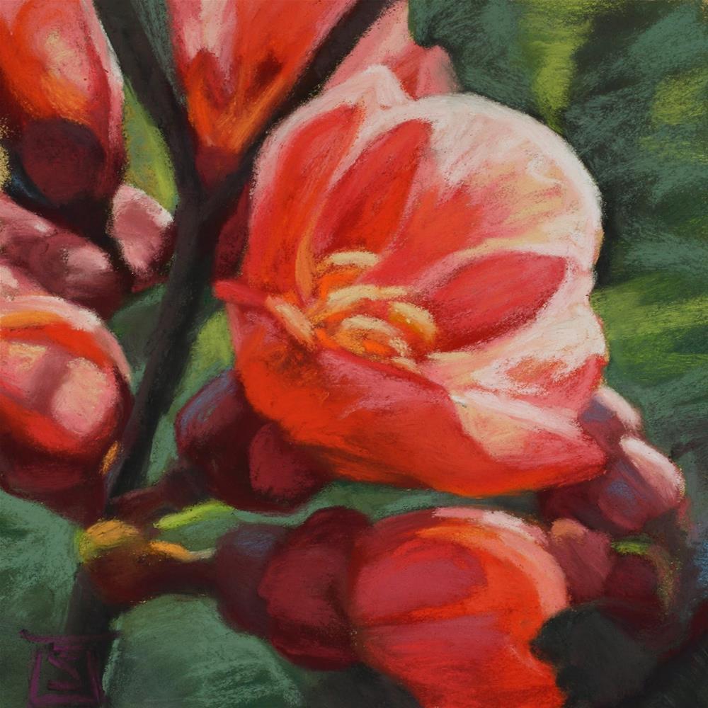 """Pink Pop"" original fine art by Sheila Evans"