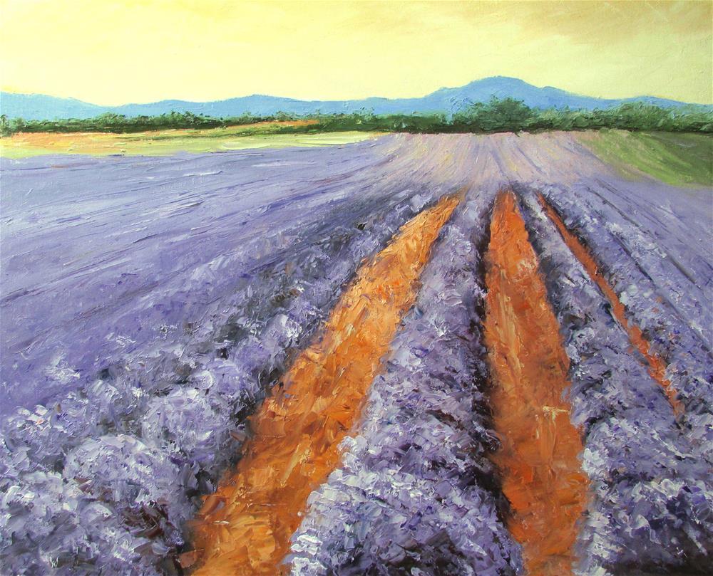 """16 x 20 inch oil Lavender Galore"" original fine art by Linda Yurgensen"