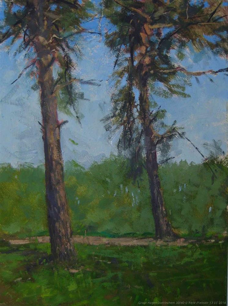 """Groot Hagen Doetinchem, The Netherlands"" original fine art by René PleinAir"