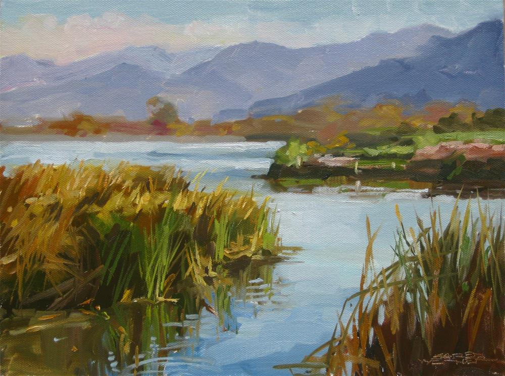 """Prado Pond, Winter"" original fine art by Karen Werner"